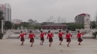 河南上蔡凤凰腰鼓舞蹈队广场舞 雪山姑娘 表演 团队版