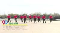 河南平顶山鲁山飞扬舞蹈队 雪山姑娘 表演 团队版