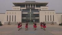 河南淮滨淮河公园玉萍舞蹈队广场舞 雪山姑娘 表演 团队版