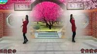 長安水仙花廣場舞《求婚歌》原創編舞附分解教學征集口令分解動作教學演示