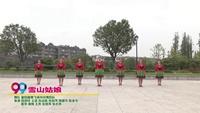 襄阳鑫舞飞扬玲玲舞蹈队广场舞  雪山姑娘 表演 团队版 附正背表演口令分解动作分解教学