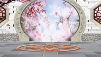 長安水仙花廣場舞星星動態背景《人面桃花》十正反面演示及分解動作教學