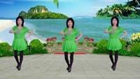 清水河广场舞-美丽的雪山姑娘正背面演示及口令分解动作教学