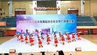 河南红蜻蜓广场舞《雪山姑娘》队形版附正背表演口令分解动作分解教学
