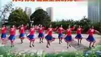 美丽的雪山姑娘重庆叶子广场舞附正背表演口令分解动作分解教学