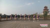 湖北麻城王立新健身队广场舞  美丽的雪山姑娘 表演 团队版