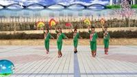 長安水仙花廣場舞《紅塵蝶戀》團隊版  編舞:楠楠正背面演示及口令分解動作教學和背面演