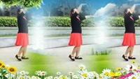 芳英广场舞巜美丽的雪山姑娘》制作彩蝶正背面演示及慢速口令教学