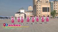 沃尔玛秧歌广场健身队广场舞  敖包再相会 表演 团队版 正背面演示及慢速口令教学