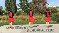 巴黎肖蒙公园健身舞《雪山姑娘》附正背面口令分解教学演示