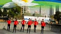 上海芳華廣場舞《秋風無情》正背面口令分解動作教學演示