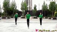 鬼步舞教学基础舞步《鬼步舞高清视频》鬼步舞广场舞附正背表演口令分解动作分解教学
