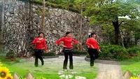 陆川快乐健身舞《死都不怕》口令分解动作教学