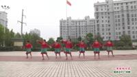 武汉黄陂盘龙城夕阳红舞蹈队广场舞  草原的月亮 表演 团队版