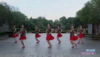 武汉快乐舞蹈队广场舞 雪山姑娘 表演 团队版 附正背表演口令分解动作分解教学