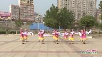广西岑溪市华艺文艺队广场舞   雪山姑娘 表演 团队版
