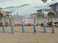 海棠依旧舞蹈队广场舞 爱如星火 表演 团队版