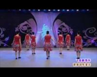 陕西西艺丹凤舞蹈培训中心广场舞 飞歌醉情怀(背身) 表演 团队版