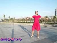 黄骅恋雪广场舞 等到山花开 动作分