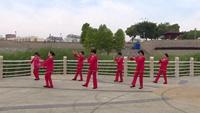 云静广场舞队广场舞 敖包再相会 表演 团队版 正反面演示及分解动作教学