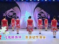 陕西田益珍广场舞  飞歌醉情怀 背面展示