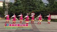 泰安梅花齐放舞蹈队广场舞  美丽的雪山姑娘 表演 团队版 附正背表演口令分解动作分解教学