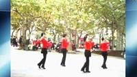 上海芳华广场舞《敖包再相会》附正背表演口令分解动作分解教学