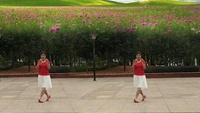 绿缘广场舞 雪山姑娘 习舞 荣英正背面口令分解动作教学演示