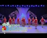 陕西西艺丹凤舞蹈培训中心广场舞 飞歌醉情怀 表演 团队版
