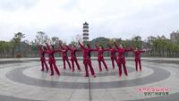 宜春上高敖阳全友广场舞 美丽的雪山姑娘 表演 原创附教学口令分解动作演示