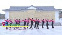 河北邯郸四厂博物馆舞队广场舞 敖包再相会 表演 团队版 正背面口令分解动作教学演示