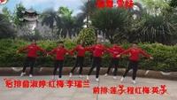 广晋广场舞《一路有爱Dj》团队版:编舞:雪妹口令分解动作教学
