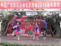 【2016广场舞协会新春联谊会】香山江南雨舞蹈队 雪山姑娘 正背面演示及慢速口令教学