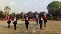 蔷薇舞蹈队《雪山姑娘》编舞:廖弟口令分解动作教学演示