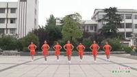 武汉新洲李集民族艺术团舞队广场舞   雪山姑娘 表演 团队版附正背面口令分解教学演示