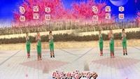 長安水仙花廣場舞《中國大媽》編舞 制作:星星口令分解動作教學