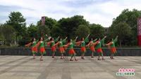 分宜金花经舞蹈队广场舞 敖包再相会 表演 团队版 原创附正背面教学口令分解动作演示