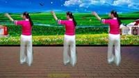 水仙花廣場舞《下雨的夜》編舞嘉興玫瑰正反面演示及分解動作教學