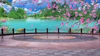 長安水仙花廣場舞星星摳像動態背景《浪漫三月桃花》完整版演示及口令分解動作教學