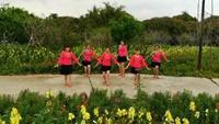自由舞队《桃花运》正背面演示及口令分解动作教学和背面演