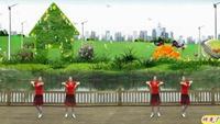 神光廣場舞《小雞小雞》附正背表演口令分解動作分解教學