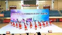 河南红蜻蜓广场舞《雪山姑娘》队形版原创附教学口令分解动作演示