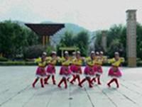 柴河威虎山艺术团广场舞 雪山姑娘 表演 正背面演示及口令分解动作教学