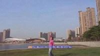 21.绿之荫广场舞〈祥云〉正反面演示及分解动作教学