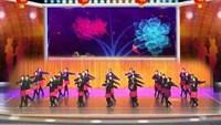 岳阳千里草广场舞《雪山姑娘》编舞春英老师完整版演示及口令分解动作教学