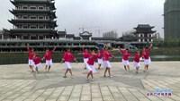 法治广场舞 雪山姑娘 表演 正背面演示及口令分解动作教学