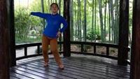 靖江背面分解舞蹈《桃花运》背面练习及分解口令分解动作教学