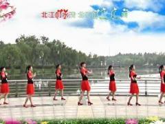 青儿舞蹈《北江美》零基础教学课程 第一课正背面口令分解动作教学演示