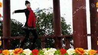 红玫瑰舞蹈《桃花运》附正背面口令分解教学演示