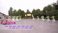河南省信阳市红英芝舞蹈队 梨花情 表演 团队版 附正背表演口令分解动作分解教学
